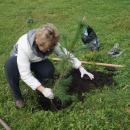 Народная акция. Горожане посадили 25 новых деревьев в парке Бердска