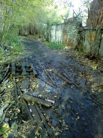 Жуткая тропа на Михайловском шоссе пугает рязанцев