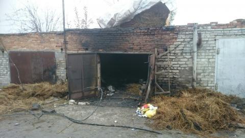 В Бердска подожгли гараж, в котором жили 40 кроликов