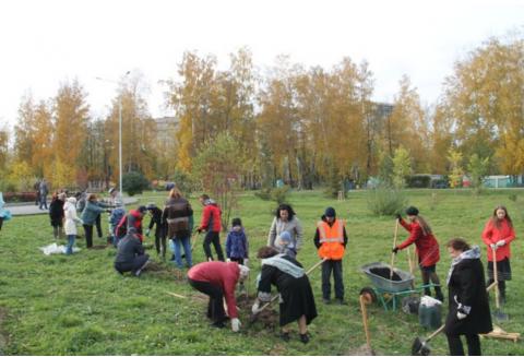 Педагоги в парке Бердска посадили черемуховую аллею