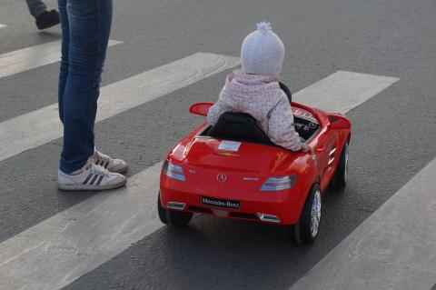 Увеличен штраф водителям Бердска, не пропустившим пешехода