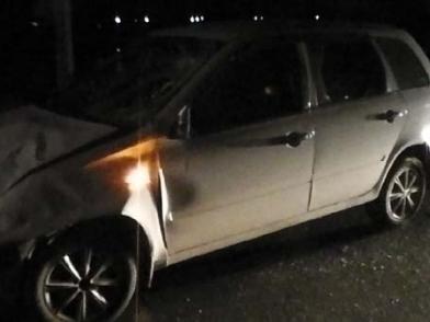 Корова попала под колеса «Лады» на трассе под Рязанью, есть пострадавшие