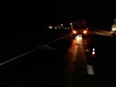 ДТП на трассе под Рязанью — насмерть сбили пешехода