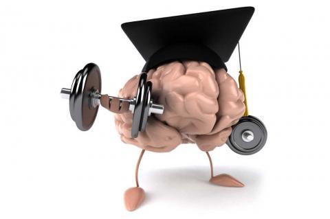Ликбез от школы «Интеллект»: без здорового мозга нет здоровой жизни