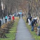 До 22 октября в Бердске уберут мусор с улиц города