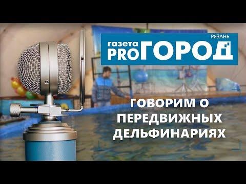 Подкаст от Pro Город Рязань №2 — Говорим о передвижных дельфинариях