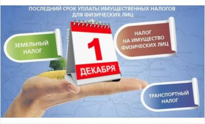 Жители Бердска могут заплатить налоги, не выходя из дома