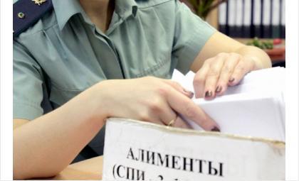 Больше 1 млн рублей долгов по алиментам заплатили трое искитимцев