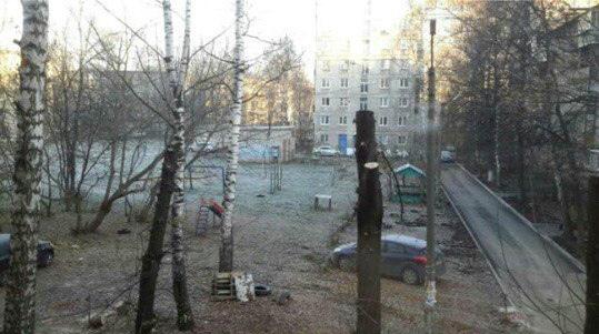 На улице Крупской вместо роскошных деревьев торчат обрубки