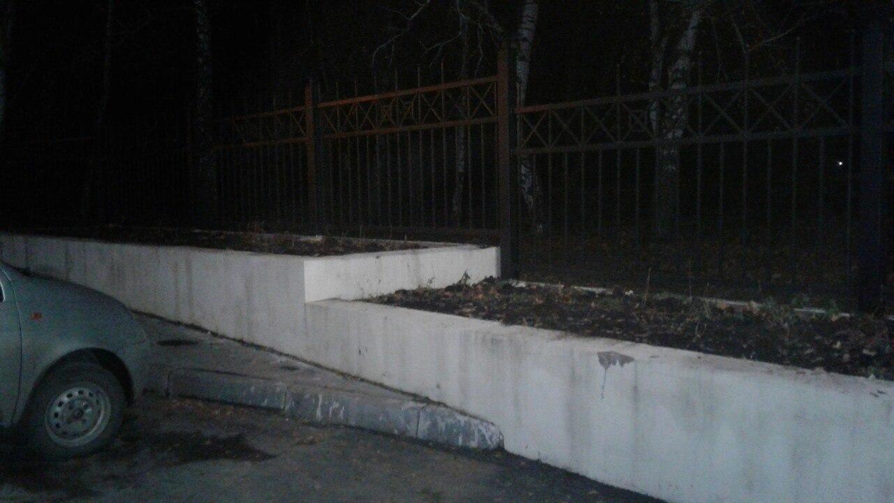 В Рязани у входа в ЦПКиО исчезли десятки кустов