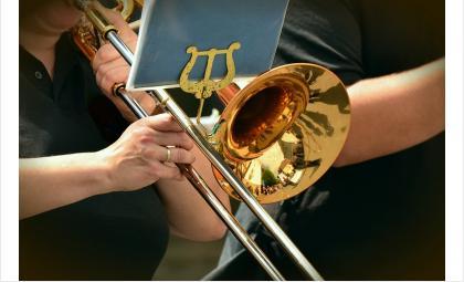 Бердчан приглашают на акцию по сбору музыкальных инструментов