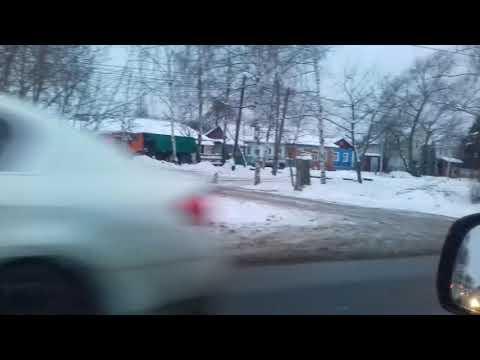 Рязанец снял на видео бесстрашную лису