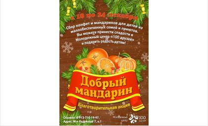 Акция «Добрый мандарин» подарит детям в Бердске новогоднее чудо