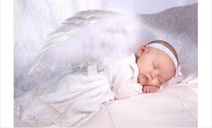 «В ожидании рождественского чуда» бердчане помогут малышам до года