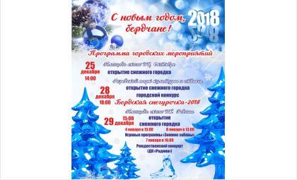 Программа новогодних праздничных мероприятий в Бердске